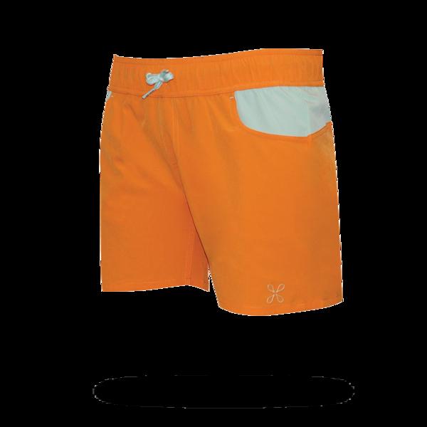 taiva_orange_back_grande